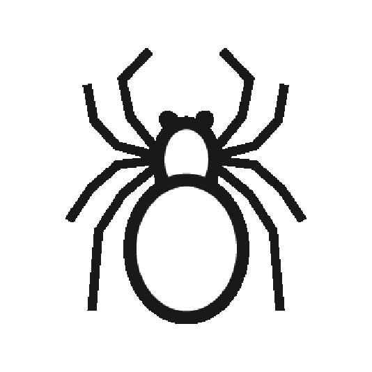 Ridleys Spider Control